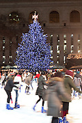 New York, New York. Etats Unis. 17 Decembre 2010.Midtown. Bryant Park..New York, New York. United States. December 17th 2010.Midtown. Bryant Park..