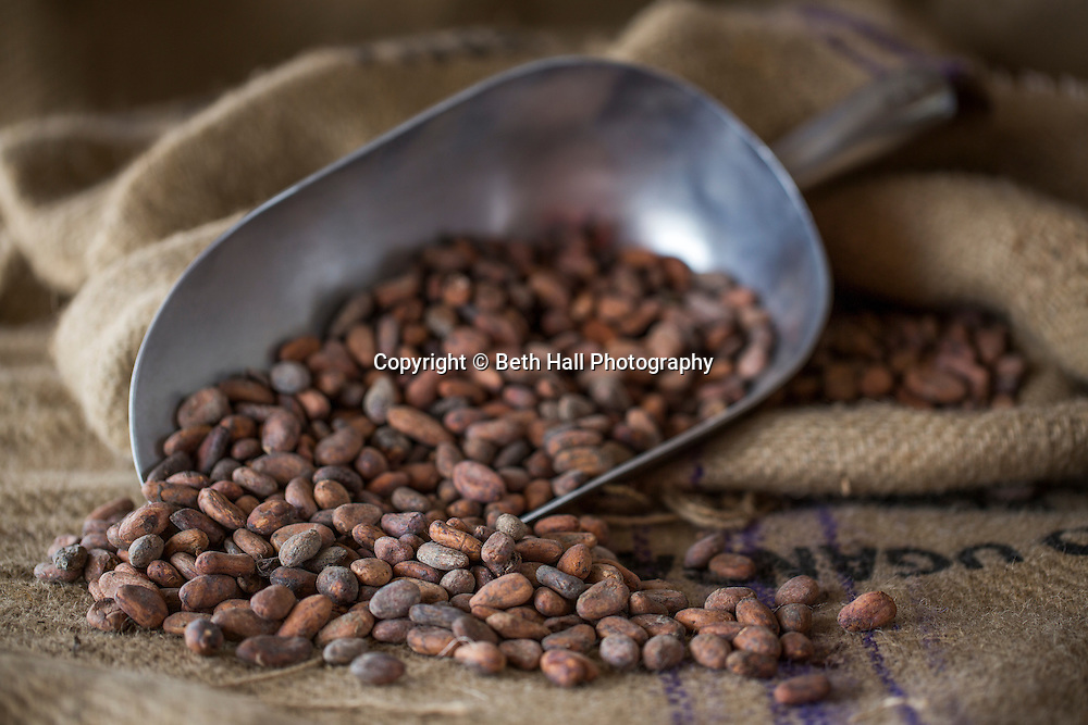 Food photo shoot of raw cacoa beans in a burlap sack.