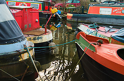 Little Venice, London, February 19th 2016. Narrowboats on the Regent's Canal as the sun rises on a clear, cold February morning. ©Paul Davey<br /> FOR LICENCING CONTACT: Paul Davey +44 (0) 7966 016 296 paul@pauldaveycreative.co.uk