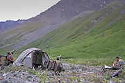 Dall Sheep Hunters Base Camp in the Chugach Mountains of Alaska