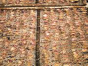 24 MARCH 2015 - MAHACHAI, SAMUT SAKHON, THAILAND: Squid dry on the sun on racks in Samut Sakhon (also called Mahachai), Thailand.     PHOTO BY JACK KURTZ