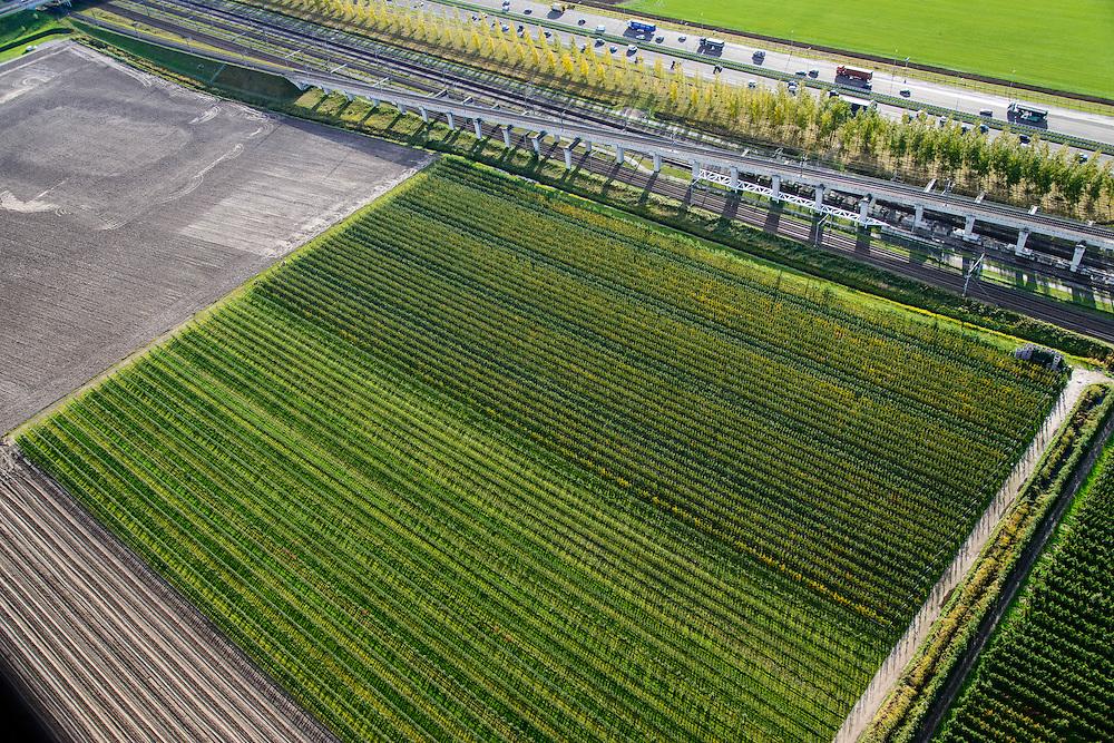 Nederland, Noord-Brabant, Gemeente Moerdijk, 23-10-2013; Infrabundel, combinatie van autosnelweg A16 gebundeld met de spoorlijn van de HSL ter hoogte van Zevenbergschen Hoek. Boomkwekerij naast de infra.<br /> Combination of motorway A16 and the HST railroad, Brabant (southern Netherlands)<br /> luchtfoto (toeslag op standard tarieven);<br /> aerial photo (additional fee required);<br /> copyright foto/photo Siebe Swart