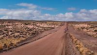 Dirt road, Bolivia