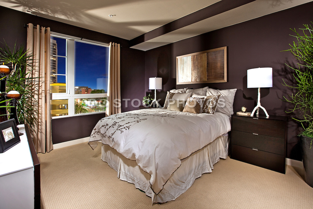 High Rise Master Bedroom With A View