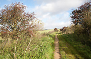 The Ridgeway long distance footpath dating from prehistory near its start on Overton Hill, Marlborough Downs, Wiltshire, England, UK