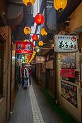Raimin Alley, Sapporo, Hokkaido, Japan