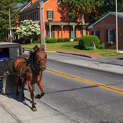 An Amish Buggy on the Old PPhiladelphia Pike in Bird-in-Hand, PA.
