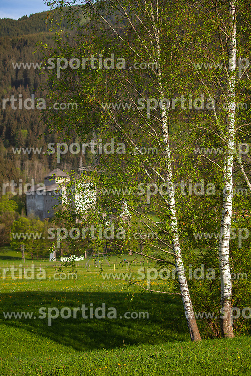 THEMENBILD - Birkenbäume im Kapruner Moos, dahinter die Burg Kaprun, aufgenommen am 28. April 2018, Kaprun, Österreich // Birch trees in the Kapruner Moos, behind the castle Kaprun on 2018/04/28, Kaprun, Austria. EXPA Pictures © 2018, PhotoCredit: EXPA/ Stefanie Oberhauser