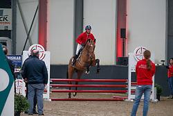 004, Ping Pong van het Schaeck, Van Den Broeck Tim, BEL<br /> Hengstenkeuring BWP<br /> 3de phase - Hulsterlo - Meerdonk 2018<br /> © Hippo Foto - Dirk Caremans<br /> 15/03/2018