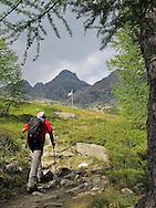 Valtellina, agosto 2011. Trekking sulle montagne valtellinesi.Alpe Lagazzuolo
