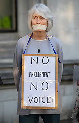 © Licensed to London News Pictures. 17/09/2019. London, UK. A protestor wearing a placard saying 'NO PARLIAMENT NO VOICE' stands amongst people lining up outside The Supreme Court. Today the court will start hearing appeals against Scottish and English courts decisions on the government's proroguing of Parliament. Photo credit: Peter Macdiarmid/LNP