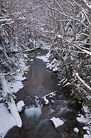 Swamp Creek North Cascades