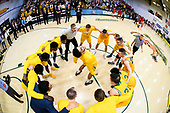 America East Semifinals Stony Brook vs. Vermont Men's Basketball 03/06/18