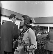 Prince Aly Khan and Bettina at the Curragh Races.13/05/1959