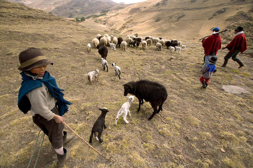 The Ayme family heads off to cultivate one of their potato fields on their small farm in the village of Tingo, near Simiatug, Ecuador. (Supporting image from the project Hungry Planet: What the World Eats.) (MODEL RELEASED IMAGE)
