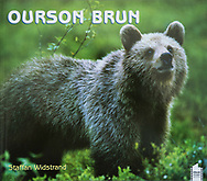 Ourson Brun, French, Pôles d´images editions, 2004
