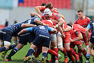 Jake Ball of the Scarlets © pushes forward. Guinness Pro12 rugby match, Scarlets  v Cardiff Blues at the Parc y Scarlets in Llanelli, West Wales on Saturday 2nd April 2016.<br /> pic by  Andrew Orchard, Andrew Orchard sports photography.