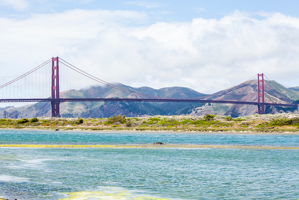 The Golden gate bridge as seen over Crissy Field marsh, San FRansisco, California, USA.
