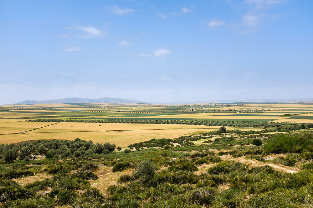 MEKNES, MOROCCO - CIRCA APRIL 2017:  Countryside view of Morocco around Volubilis, an historical landmark and popular tourist attraction in Morocco.