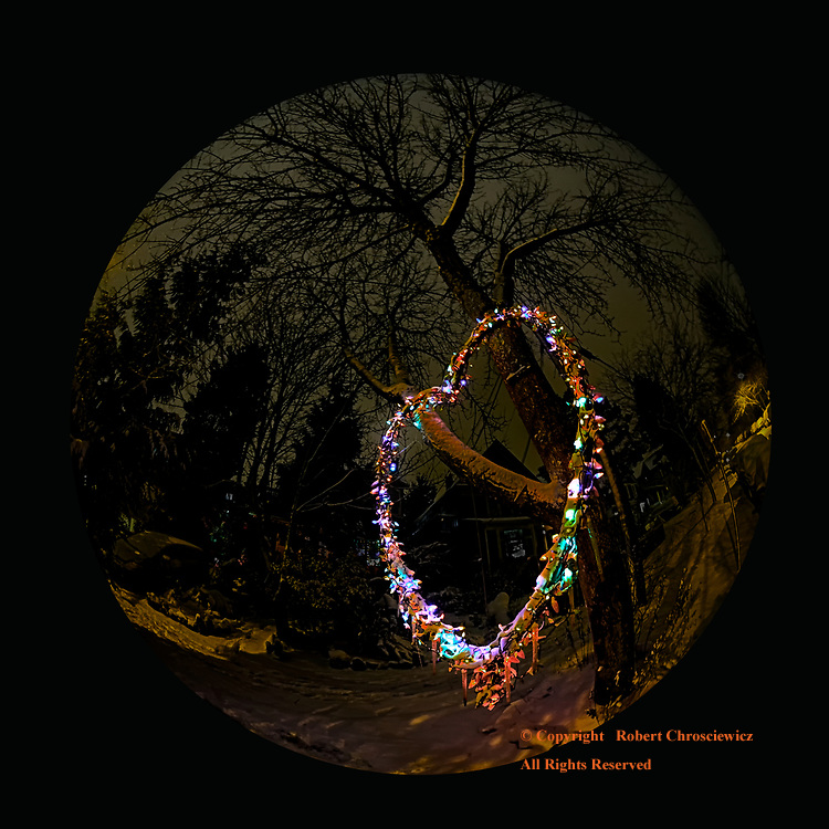 Circle of Love: A fish eye view of winters snow and a festively lit heart cast in a tree, Vancouver British Columbia Canada.