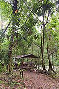 A to Z back to Nature Batu Usap camp site, Temburong National Park, Brunei