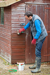 Treating a wooden shed with preservative