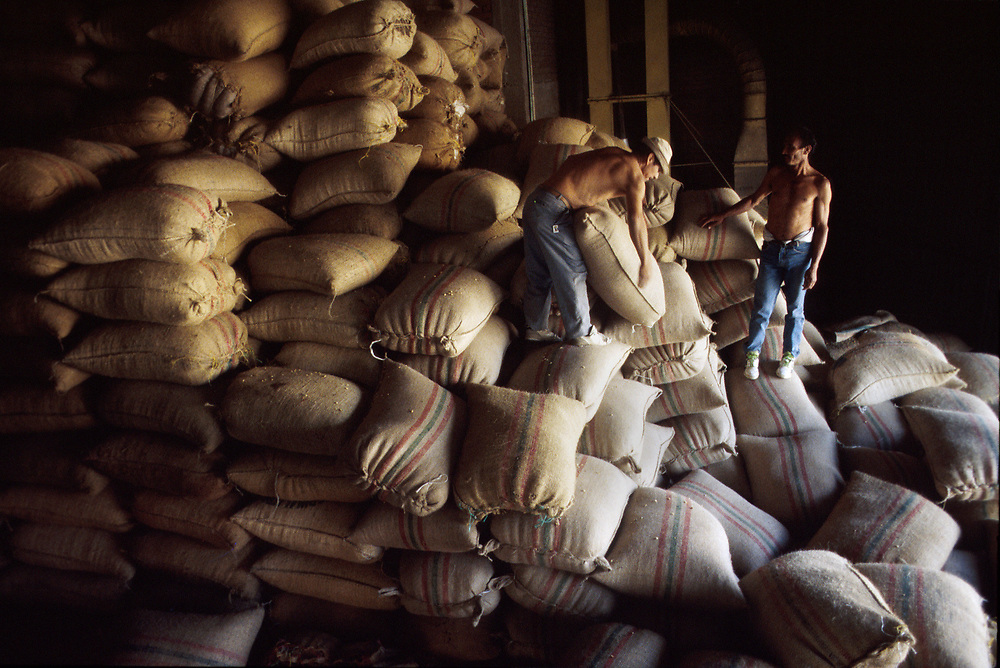 Sacks of quality controlled coffee beans ready for export in a warehouse, Coffee region (Zona Cafetero, Manizales, Caldas