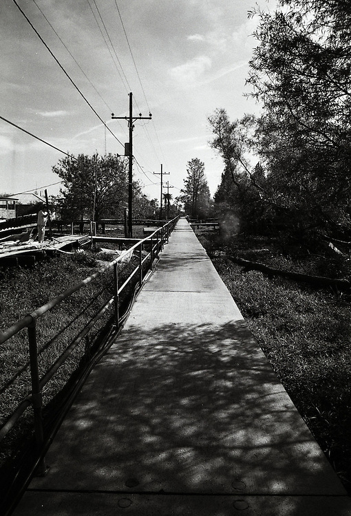Pilottown, LA, 1/05
