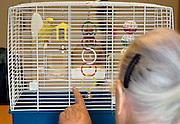 Nederland, Nijmegen, 15-10-2003..Ouderenzorg.Oudere vrouw in de dagopvang van een verzorgingshuis praat tegen een vogeltje, kanarie in een kooitje. Verzorging ouderen, bejaarden, dagaktiviteit, dagopvang, dagbesteding. Hulp, sociaal isolement, aandacht. Mens dier relatie op oudere leeftijd. Huisdier...Foto: Flip Franssen