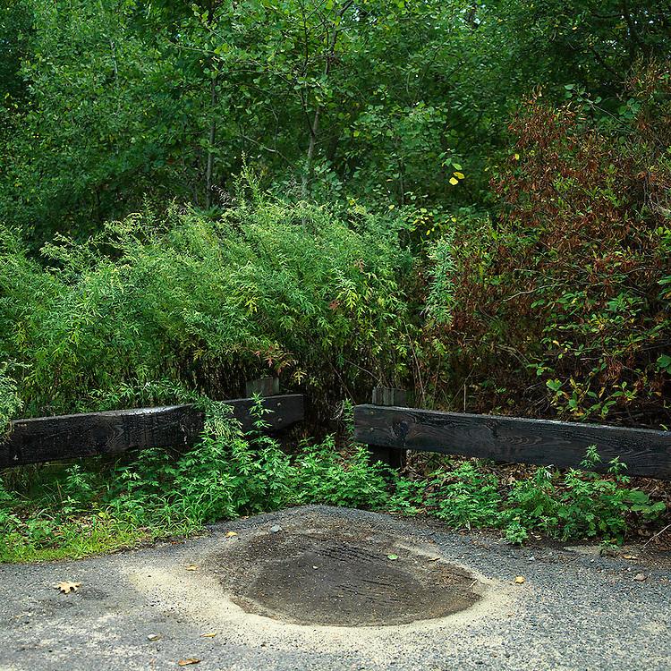 Walden Pond Parking Lot