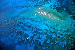 Sand Island, Molasses Reef, Florida Keys National Marine Sanctuary, Key Largo, Florida, Atlantic Ocean