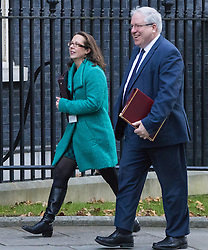 Downing Street, London, November 29th 2016. Lord Privy Seal and Leader of the House of Lords Baroness Natalie Evans and Chancellor of the Duchy of Lancaster Patrick McLoughlin arrives at 10 Downing Street for the weekly meeting of the UK cabinet.