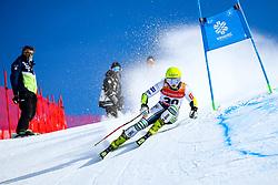 Neja Dvornik (SLO) during giant slalom race at FIS European Cup Krvavec 2021, February 2, 2021 in Krvavec, Cerklje na Gorenjskem, Slovenia. Photo by Matic Klansek Velej / Sportida