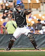 GLENDALE, ARIZONA - MARCH 02:  James McCann #33 of the Chicago White Sox catches against the Colorado Rockies on March 2, 2019 at Camelback Ranch in Glendale Arizona.  (Photo by Ron Vesely)  Subject:  James McCann