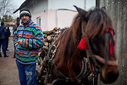Portrait of Mr. Costache who is prepearing a transport of wood with his horse Corina.
