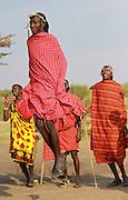 Kenya, Masai Mara, Masai (Also Maasai) Tribesmen an ethnic group of semi-nomadic people