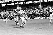 Wexford swings for the slitor but misses as the ball falls on the ground during the All Ireland Senior Leinster Hurling Final Kilkenny v Wexford at Croke Park on the 24th of July 1977. Wexford 3-17 Kilkenny 3-14.