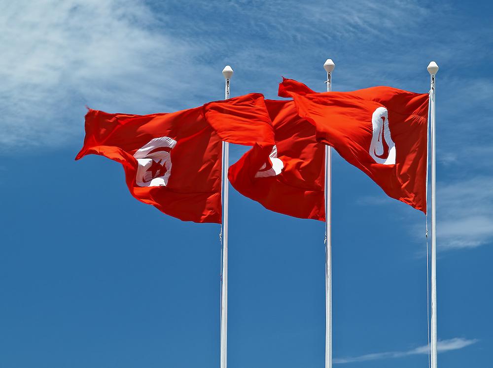 Tunisia - Flags