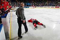 KELOWNA, CANADA - MARCH 3:  Portland Winterhawks' athletic therapist Rich Campbell walks onto the ice to tend to Seth Jarvis #24 after a check by the Kelowna Rockets on March 3, 2019 at Prospera Place in Kelowna, British Columbia, Canada.  (Photo by Marissa Baecker/Shoot the Breeze)