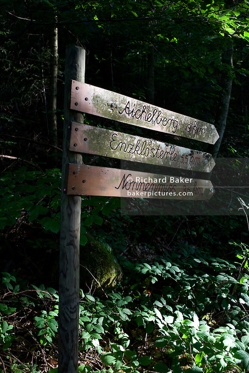 Walking route sign marks distance in km through dark forest in the German Black Forest region near village of Kälbermühle
