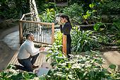 Steve proposes to Mojan
