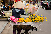 01 APRIL 2012 - HANOI, VIETNAM:  A woman uses a bicycle to deliver flowers in the Old Quarter of Hanoi, the capital of Vietnam. Hanoi recently celebrated its 1000th Anniversary, making it one of the oldest permanently inhabited cities in Asia.      PHOTO BY JACK KURTZ