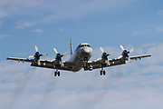 A Lockheed P-3C Orion maritime patrol aircraft with Air Development Squadron 51 of the Japanese Self-Defence Force (JSDF) flying out of Naval Air Facility Atsugi, Yamato, Kanagawa, Japan. Tuesday December 4th 2018