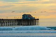 Birds Flying Over Ruby's Restaurant on Oceanside Pier