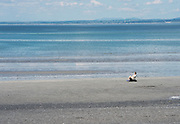 17/06/2014  All the beach in the world woman and her dog on  Tracht beach near Kinvara Co. Galway   . <br />   Photo:Andrew Downes