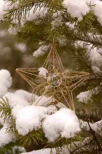Holidays, Christmas Ornament in Snowy tree.