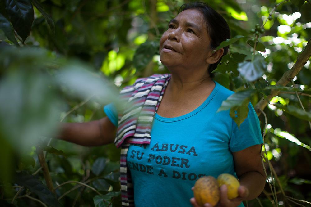 Fairtrade coffee farmer near Pueblo Nuevo.