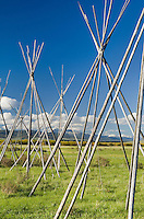 Tepee frames denoting and memorializing the Nez Perce camp at Big Hole National Battlefield Montana