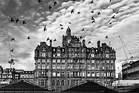 Birds in Flight in Edinburgh with the famous Balmoral Hotel set against a cloudy sky