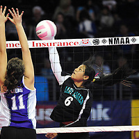 111612  Adron Gardner<br /> <br /> Navajo Prep Eagle Desmarie Hanley (6) spikes to the  Santa Rosa Lions in the state volleyball quarterfinals at the Santa Ana Star Center in Rio Rancho Friday.
